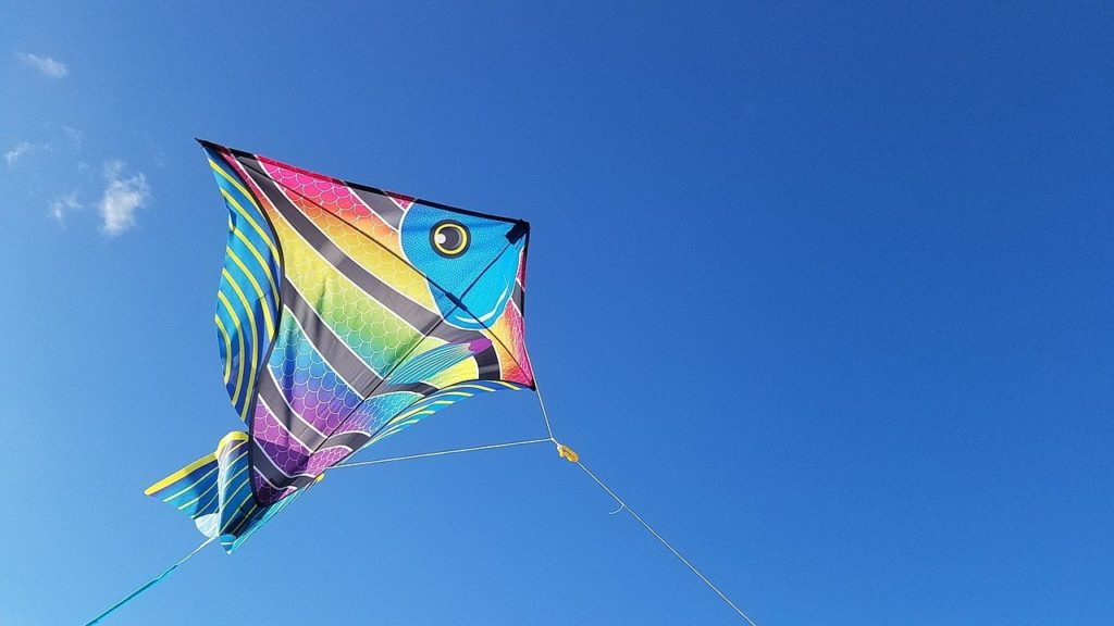 kite, jacksonville, florida